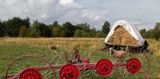 развитие села аграрная программа партии яблоко