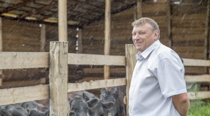 александр конашенков автор программы партии яблоко по развитию российского села
