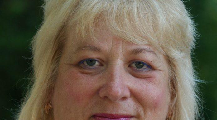 Елена Семенова, кандидат псковского яблока на выборах в новосокольническом районе
