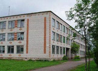 Выпускники школы №1 Порхова волнуются за будущее своей малой Родины.