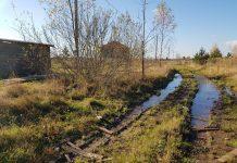 Так выглядит дорога к участкам, выделенным многодетным семьям в деревне Борисовичи.