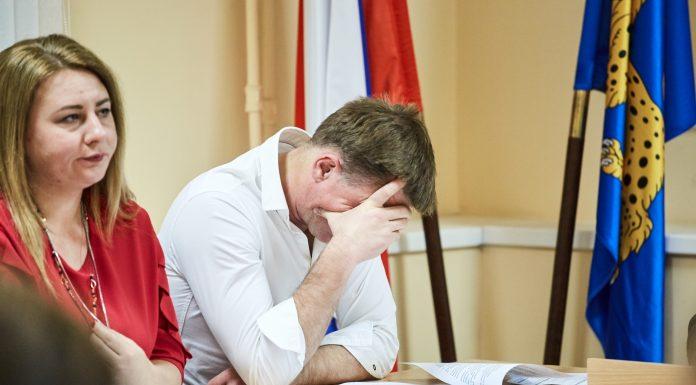 Особенности дискуссии о возврате прямых выборов глав Пскова и Великих Лук